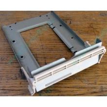 Заглушка для корзины SCSI дисков 55.59903.011 для серверов HP Compaq (Астрахань)